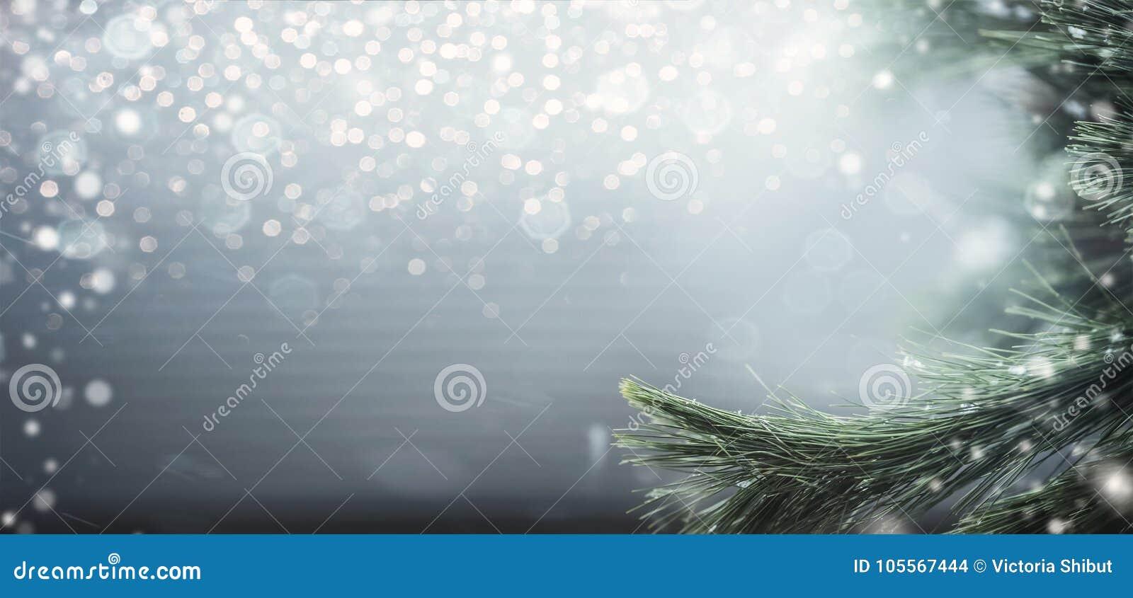 Prachtige de winterachtergrond met spartakken, sneeuw en bokeh verlichting De wintervakantie en Kerstmis
