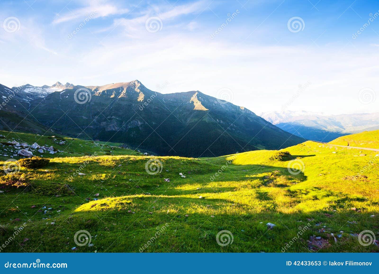Prado de la montaña en los Pirineos
