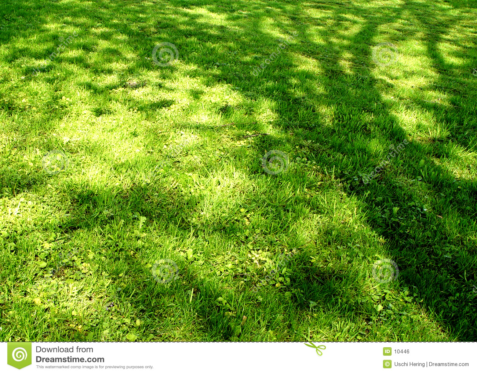 Prado de la sombra