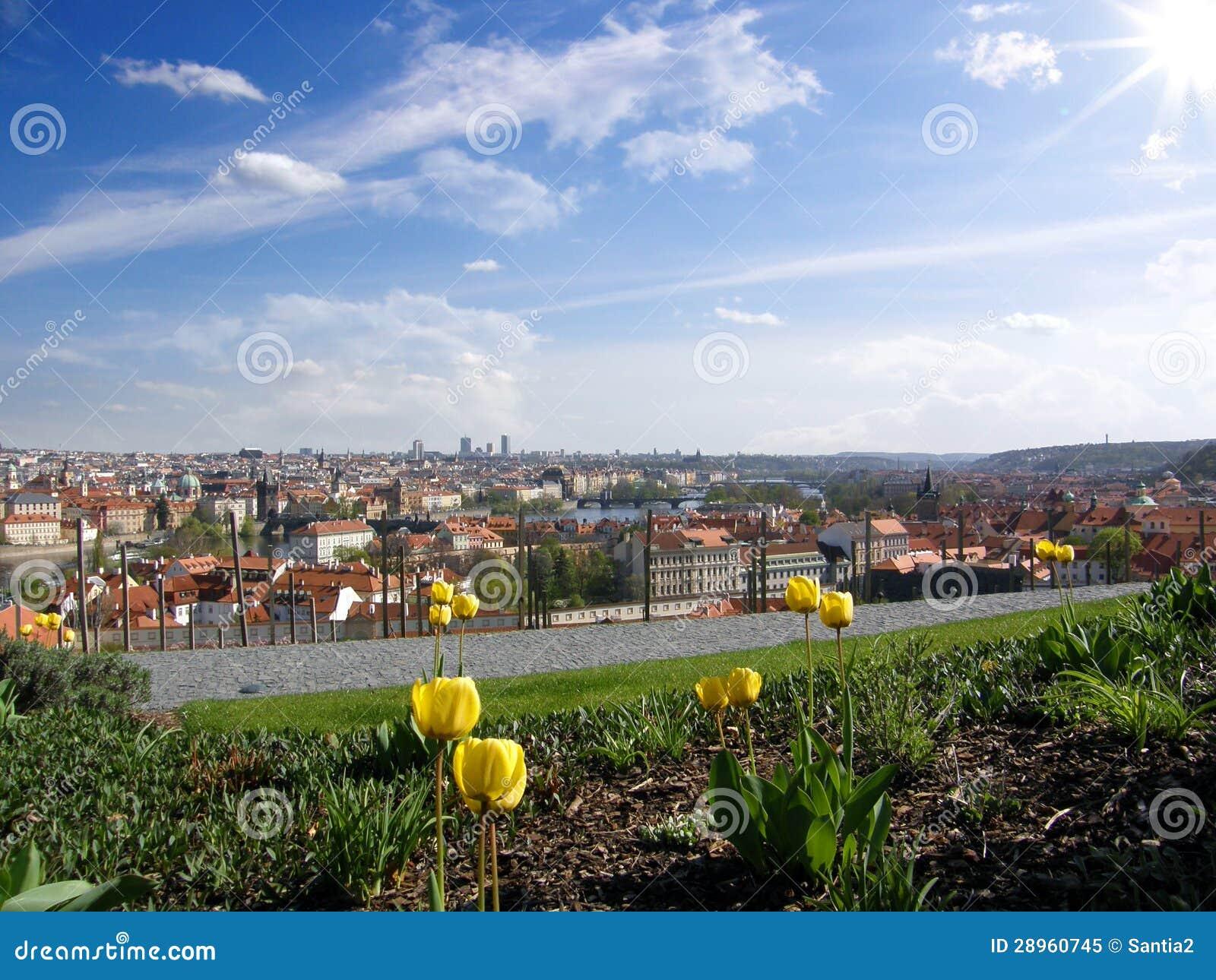 Praga pejzaż miejski w wiośnie