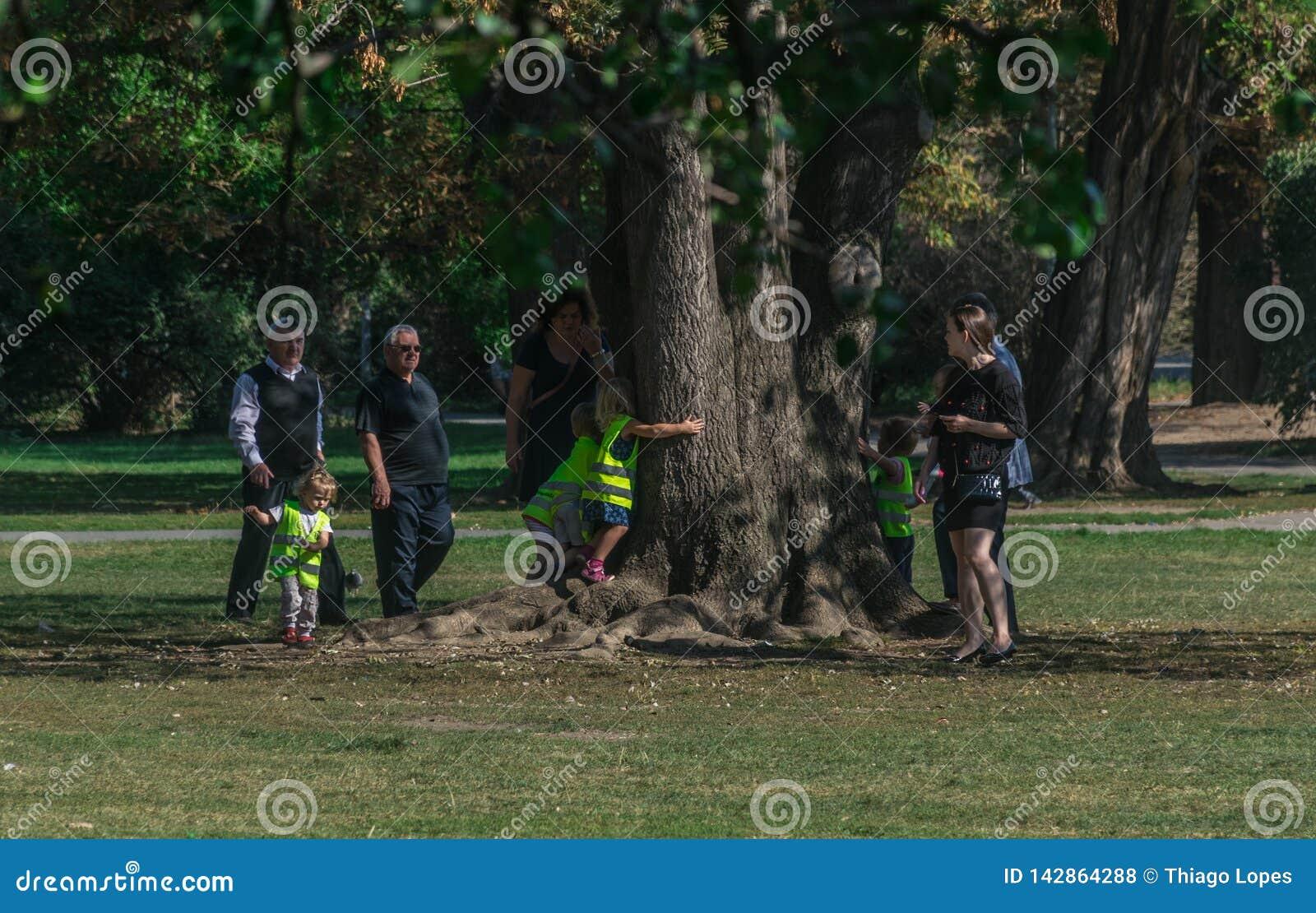 Prague, Czech Republic - September 10, 2019: kids hugging a tree under parents supervision