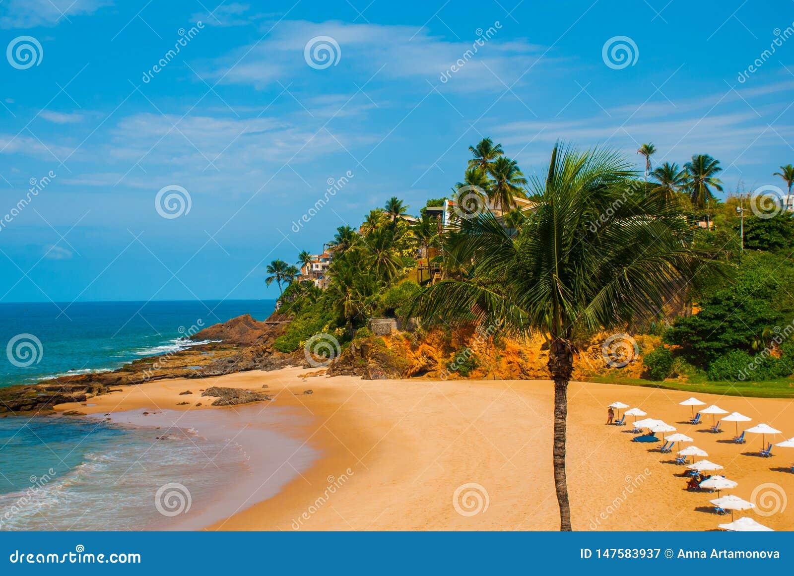 Praia brasileira com areia amarela e mar azul no tempo ensolarado brasil salvador ?m?rica do Sul