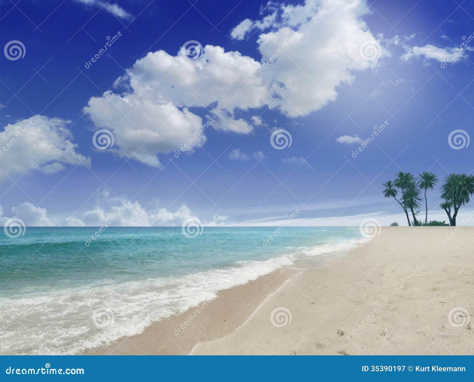 Praia com palmas