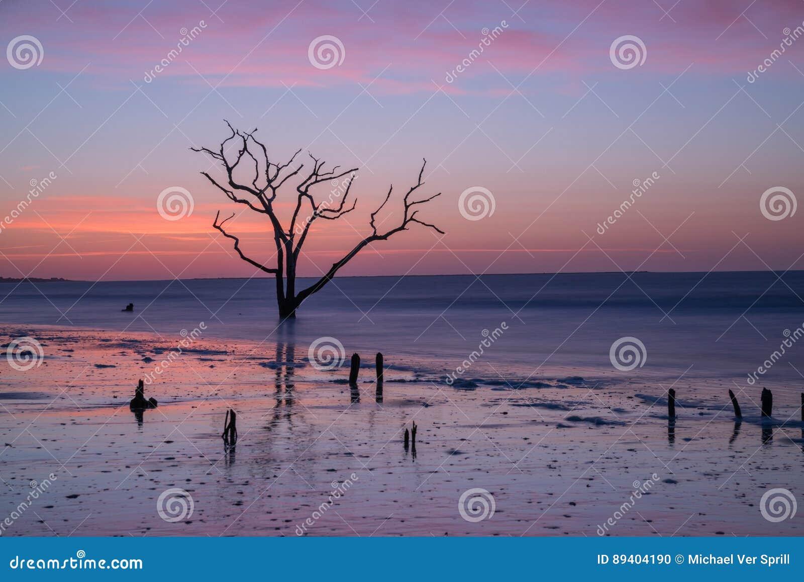 Praia da baía da Botânica no alvorecer