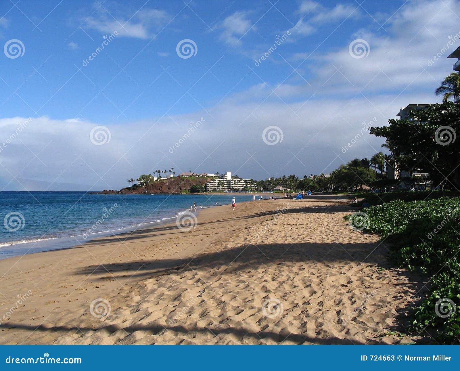 Praia de Kaanapali - Maui, Havaí