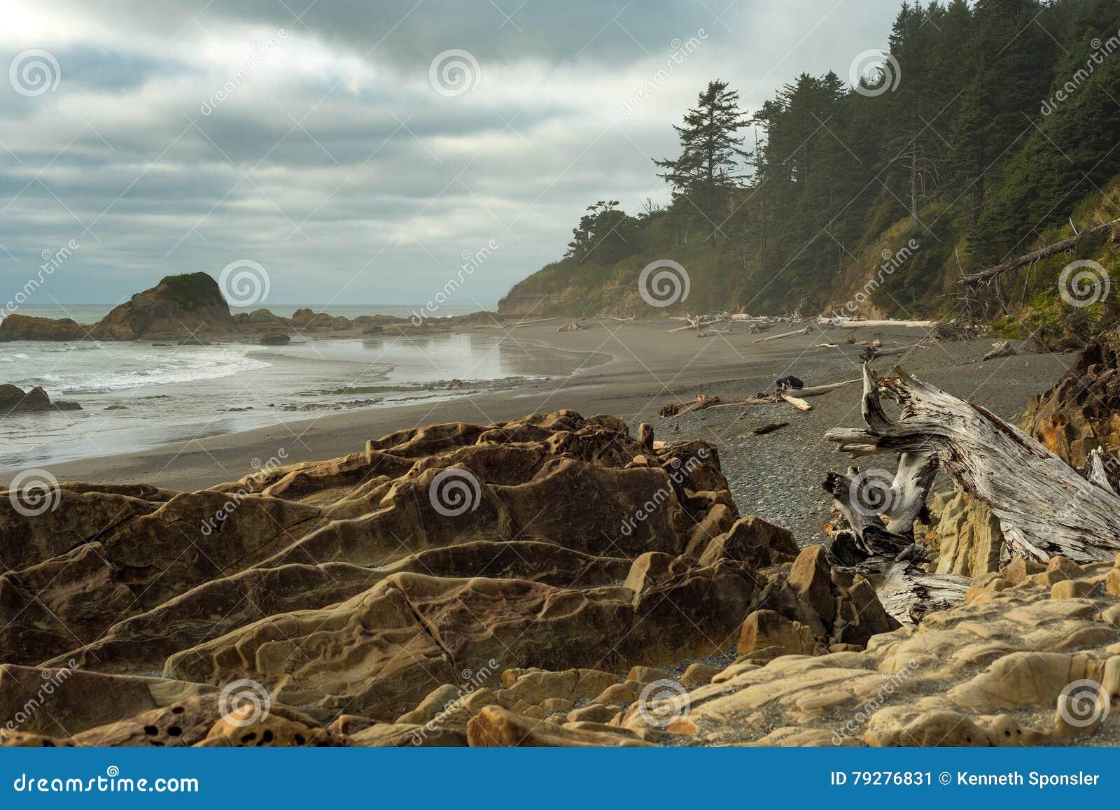 Praia de Rocky Pacific