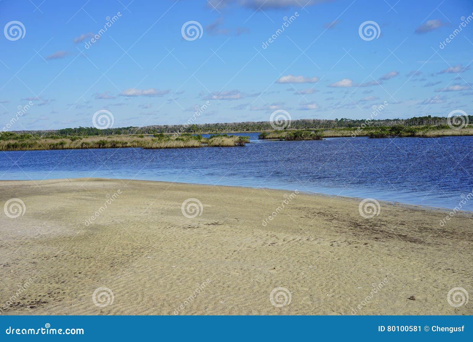 Praia do hernando de Florida: terra molhada