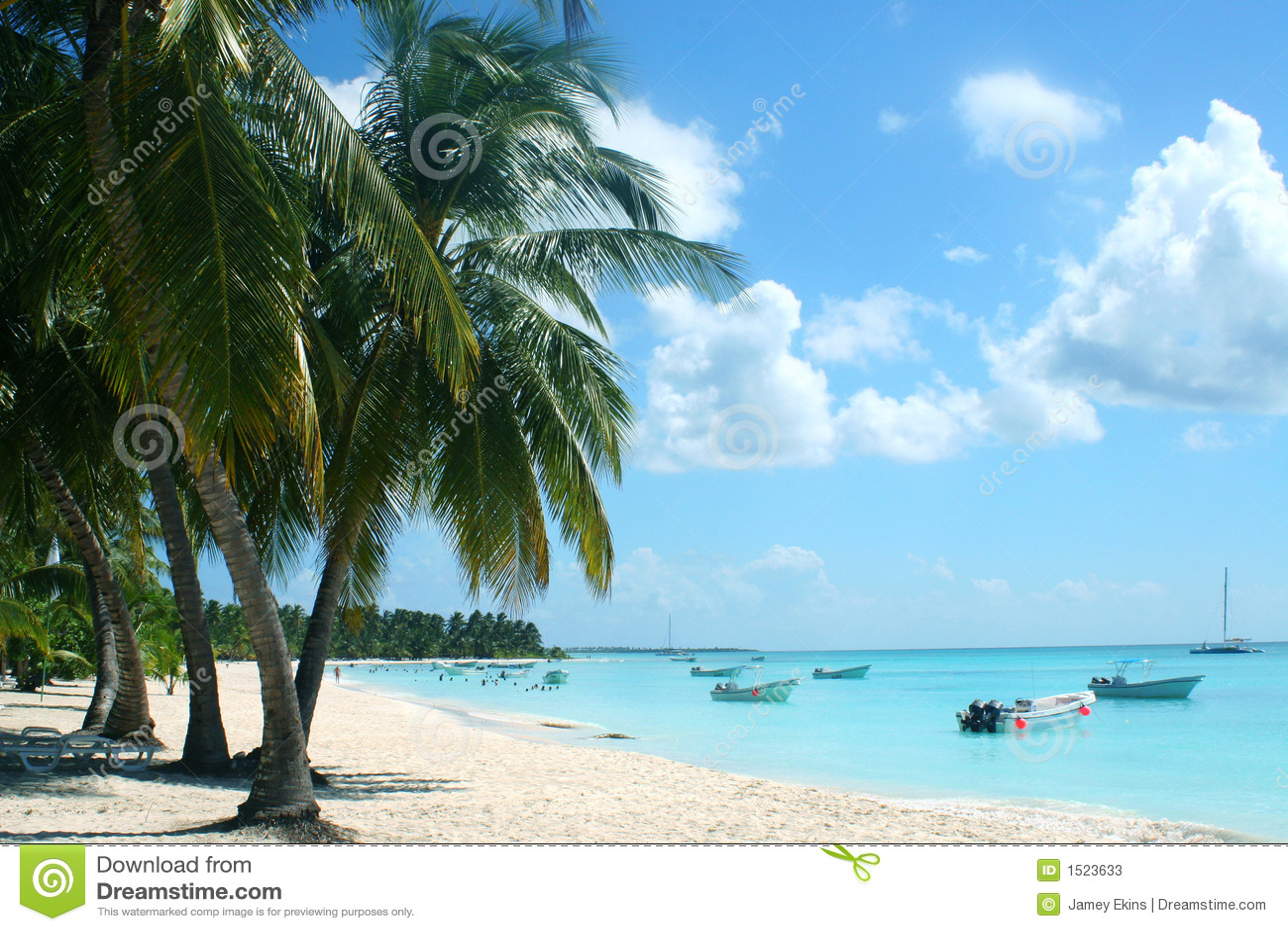 Praia e louro tropicais