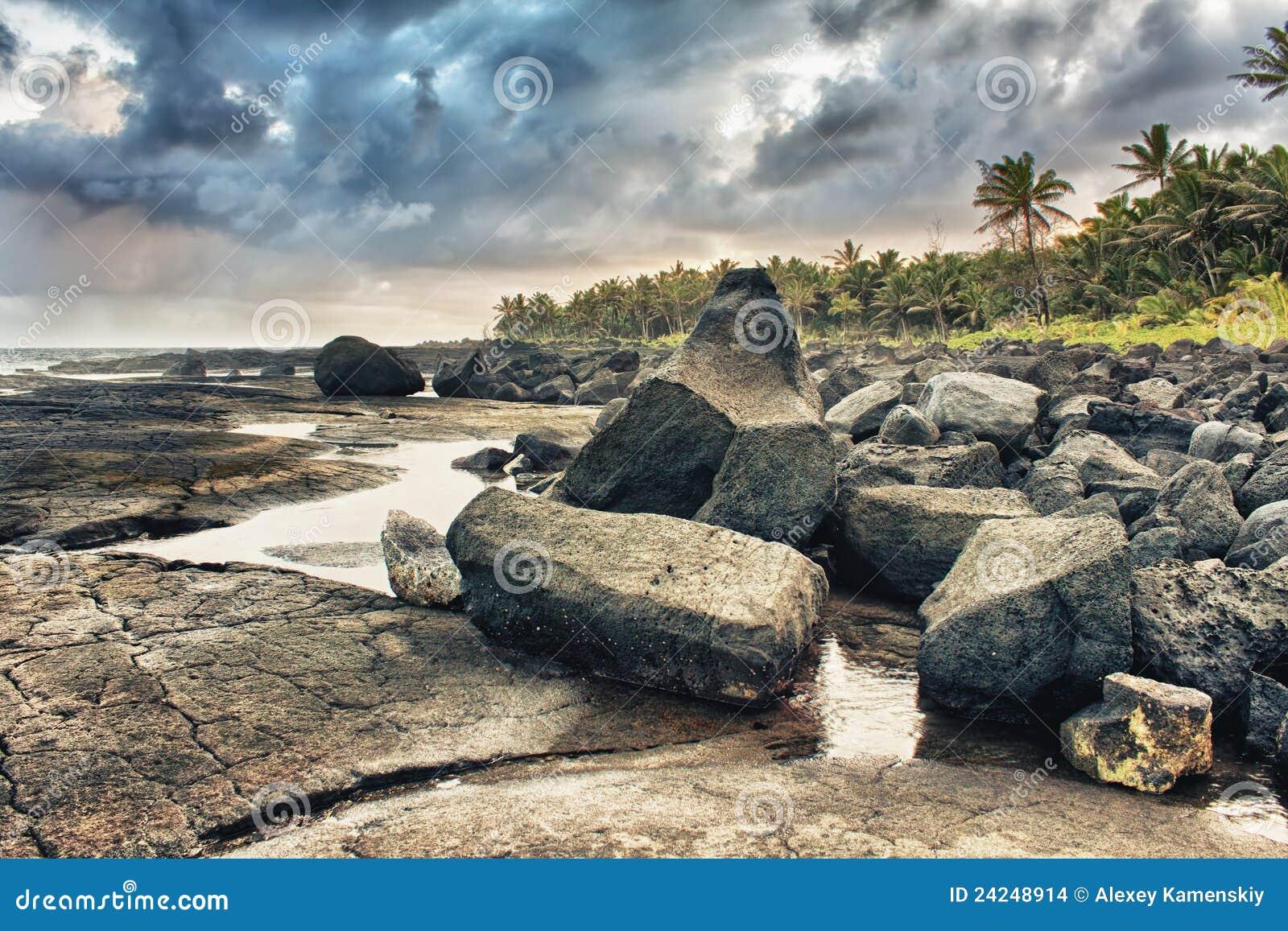Praia e palmeiras tropicais da lava