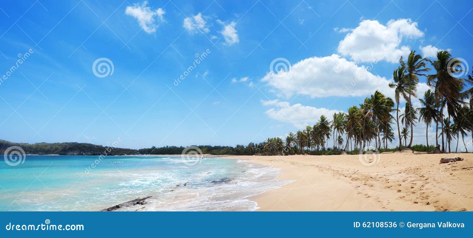 Praia exótica com palmas e as areias douradas na República Dominicana,