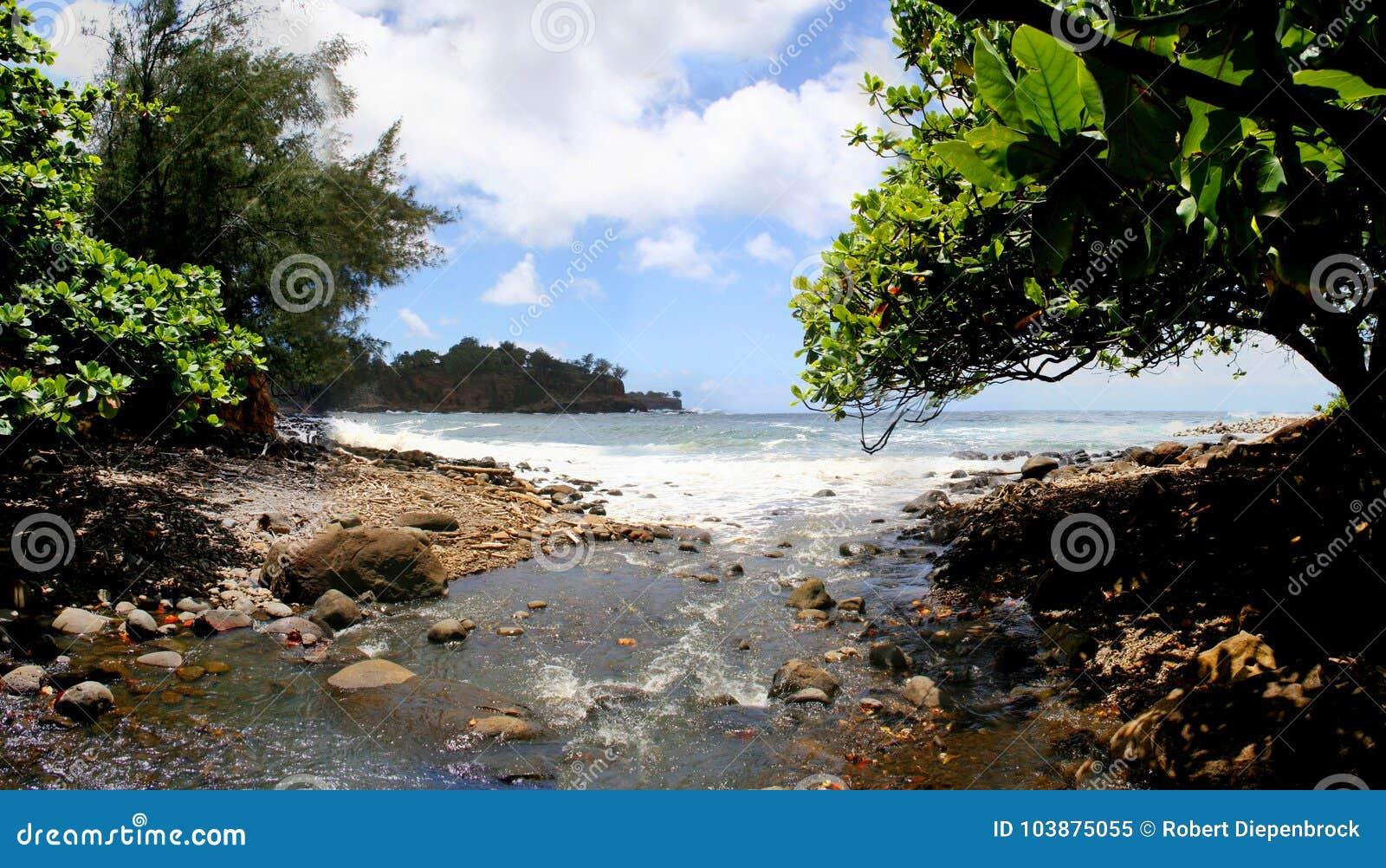 Praia Kapaau Havaí de Keokea
