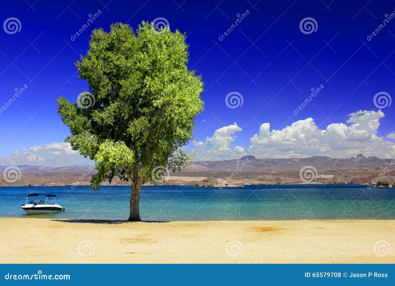 Praia Nevada do Mohave do lago