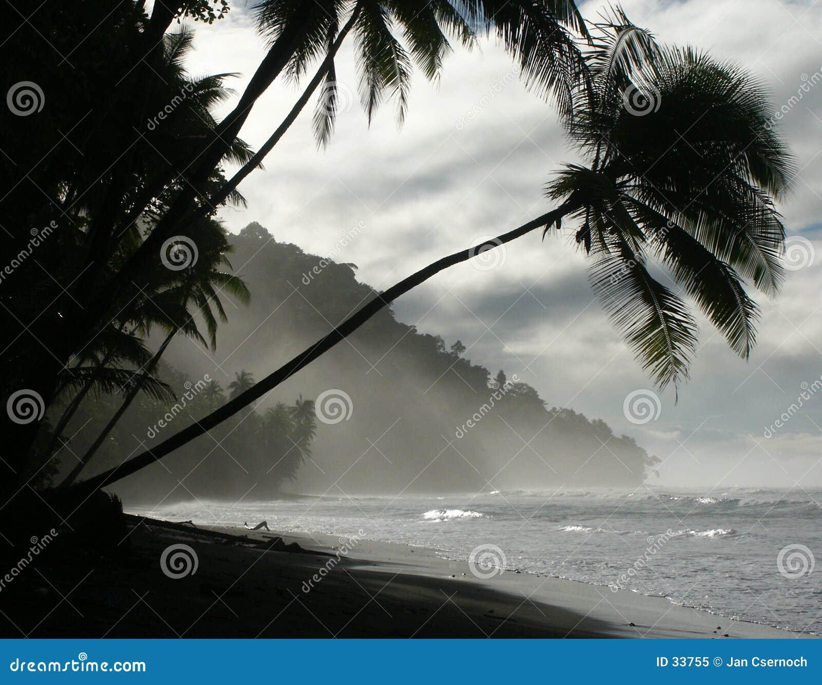 Praia no alvorecer