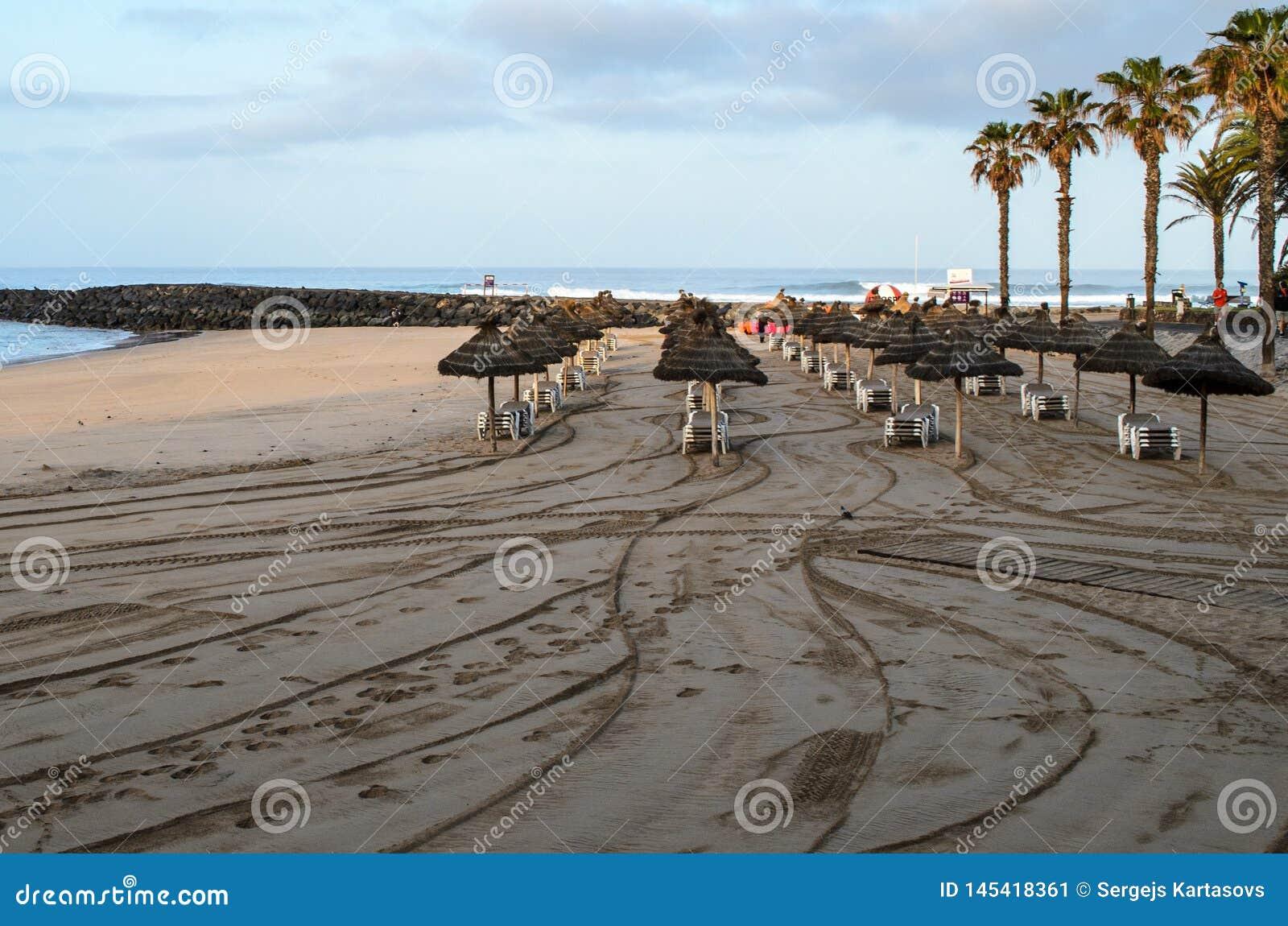 Praia no alvorecer, Tenerife do Los Cristianos, Ilhas Can?rias, Espanha