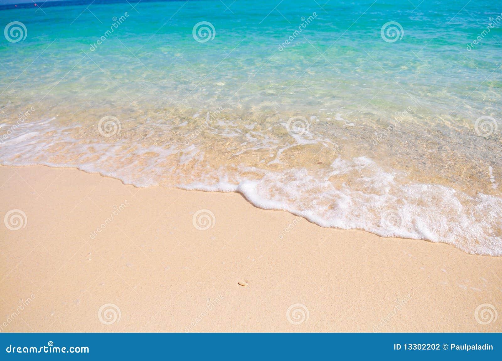 Praia tropical com a areia coral branca