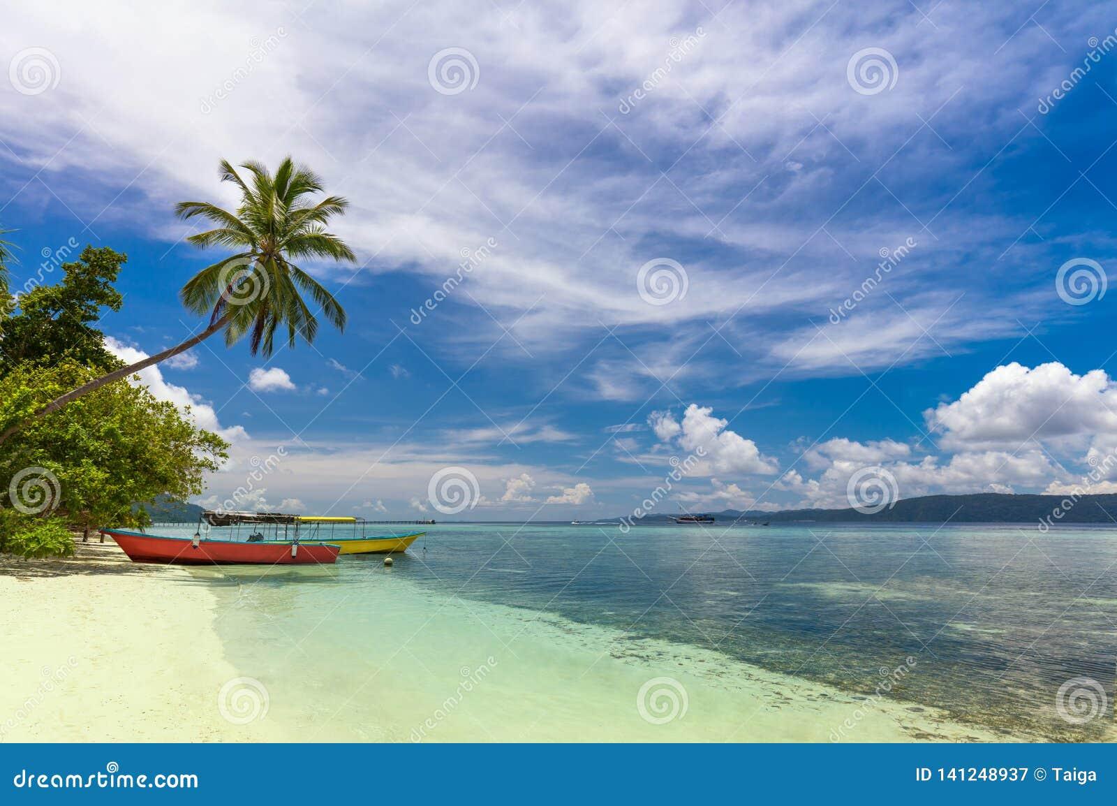 Praia tropical com barcos locais, palma de coco, a areia branca e a água de turquesa