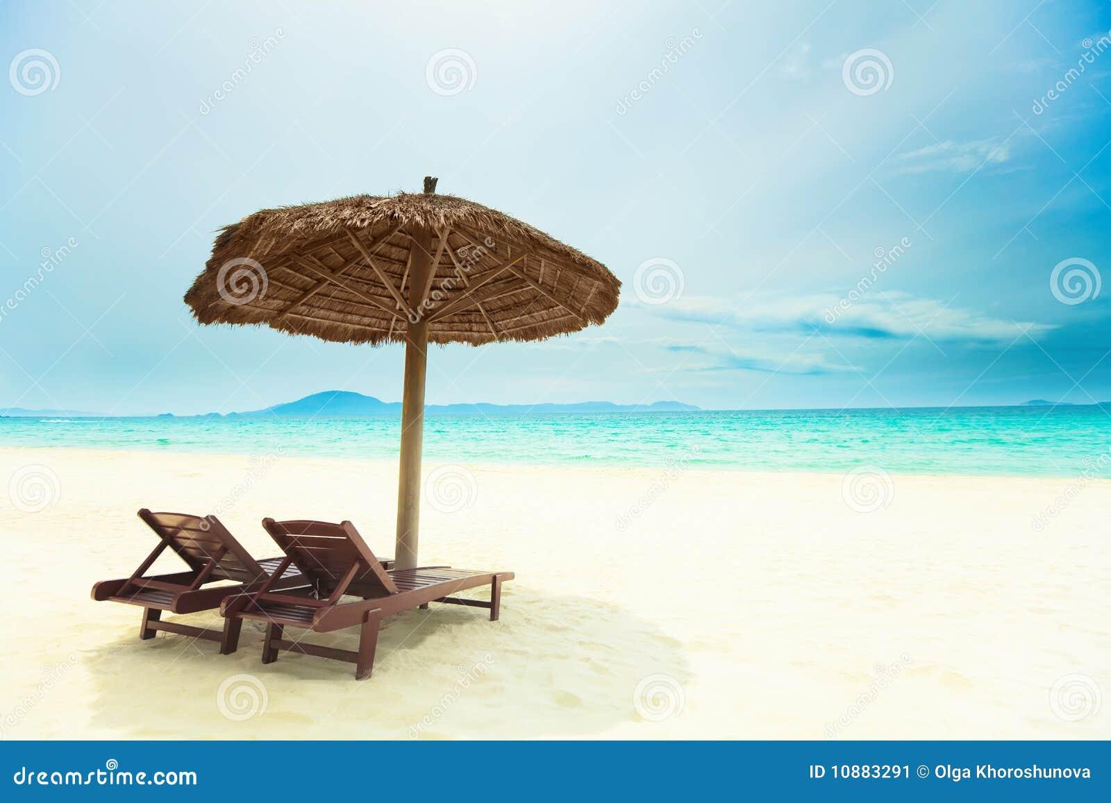Praia tropical de Sandy