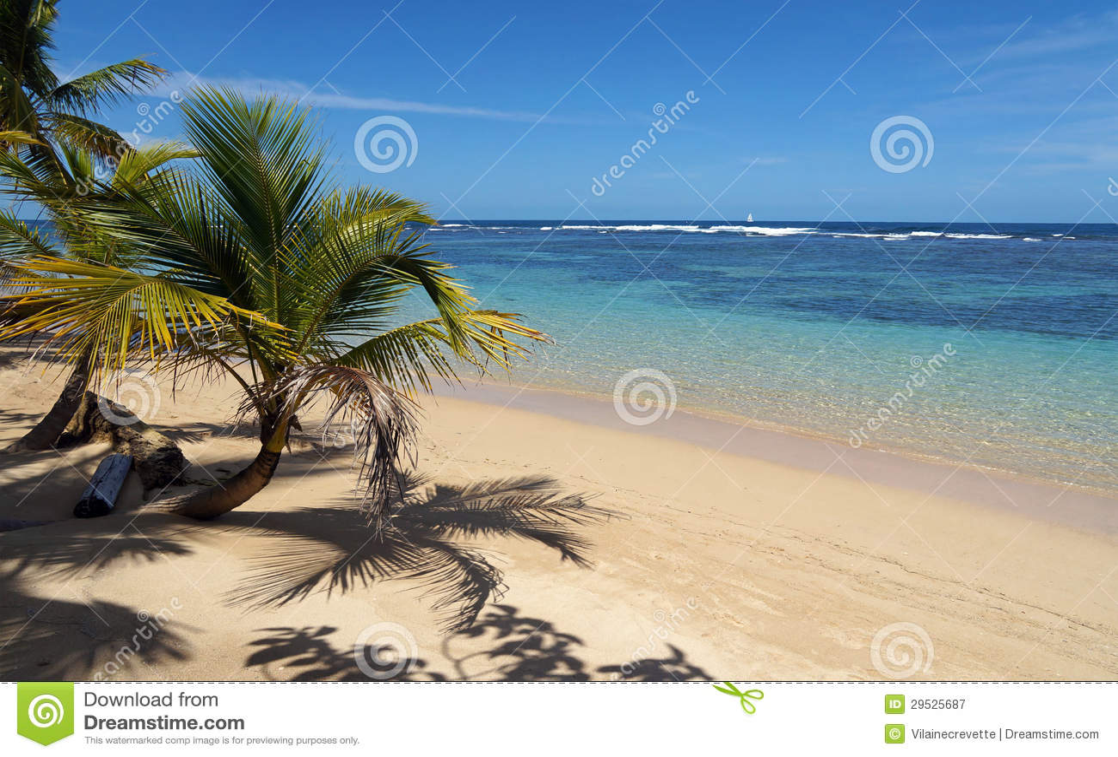 Praia tropical um a parte de paraíso