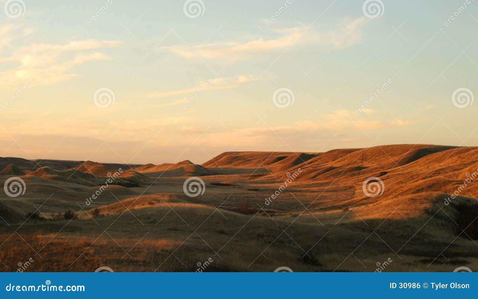 Praire krajobrazu