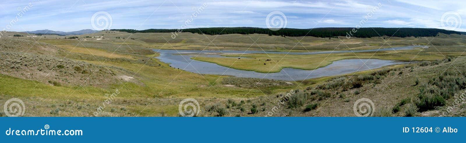 Prairie de Yellowstone