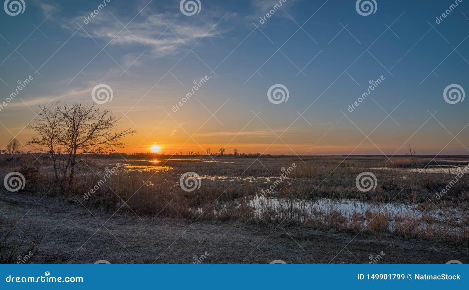 Prairiemoerasland/weide en landelijk grasrijk landweglandschap bij zonsondergang met sinaasappel, geel, en blauw in hemel - sprin