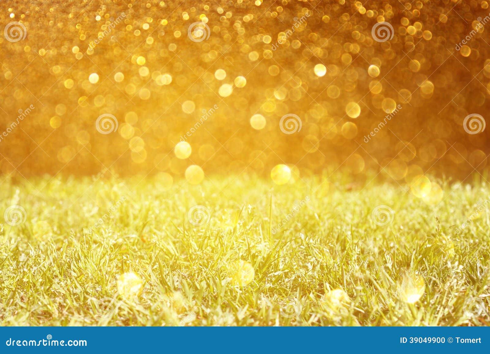 Prato e luci dorate di scintillio