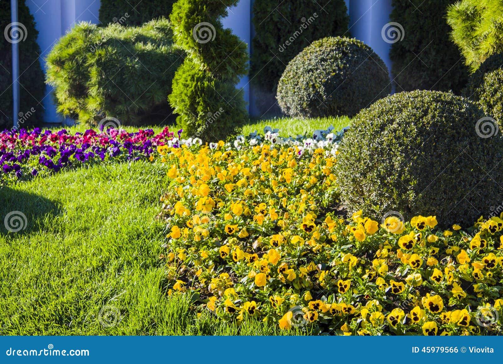 Prato inglese del giardino fotografia stock immagine di - Giardino in inglese ...