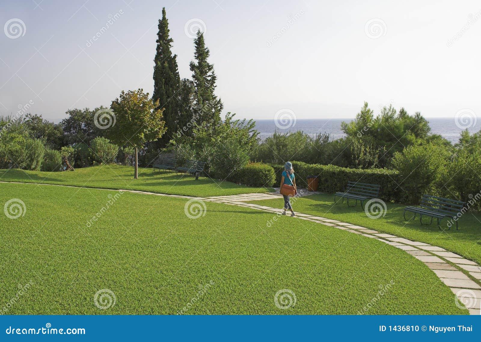 Prato inglese verde