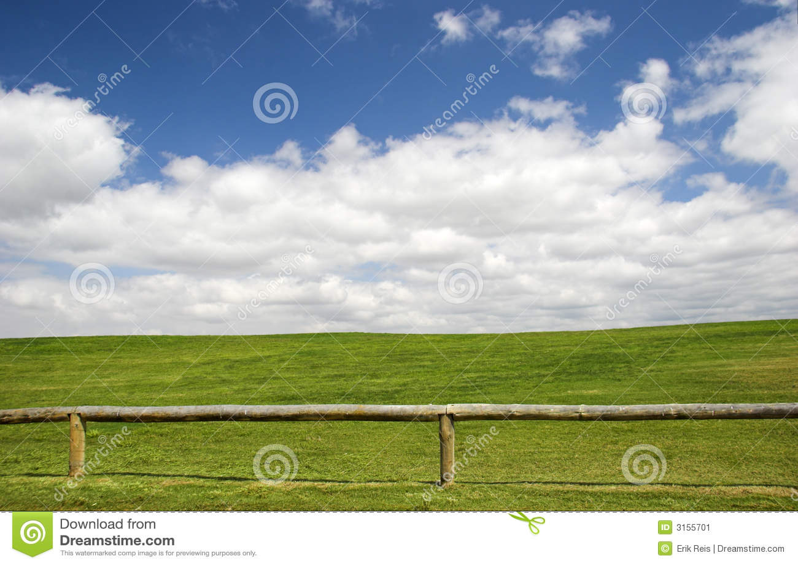 Prato verde immagine stock immagine di sviluppisi erba for Prato verde