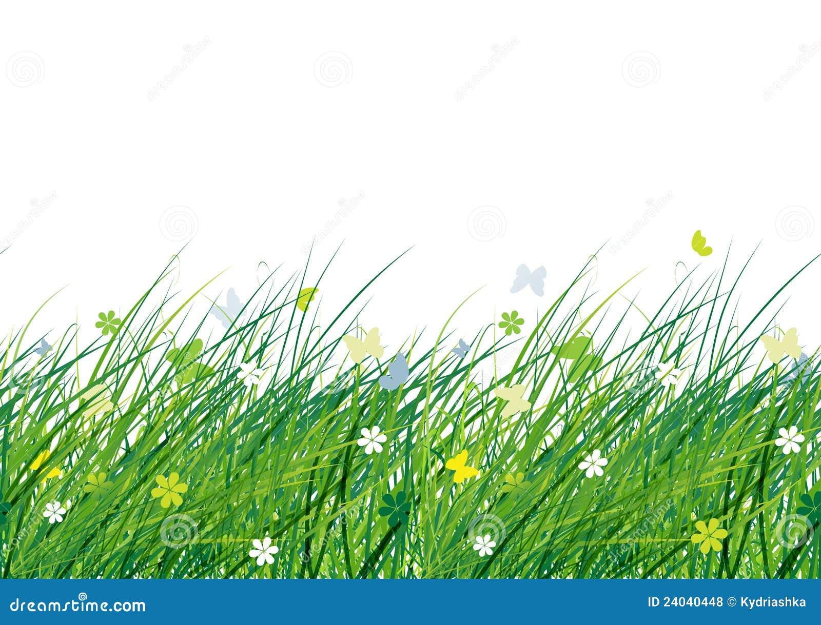 Prato verde reticolo senza giunte per il vostro disegno for Prato verde
