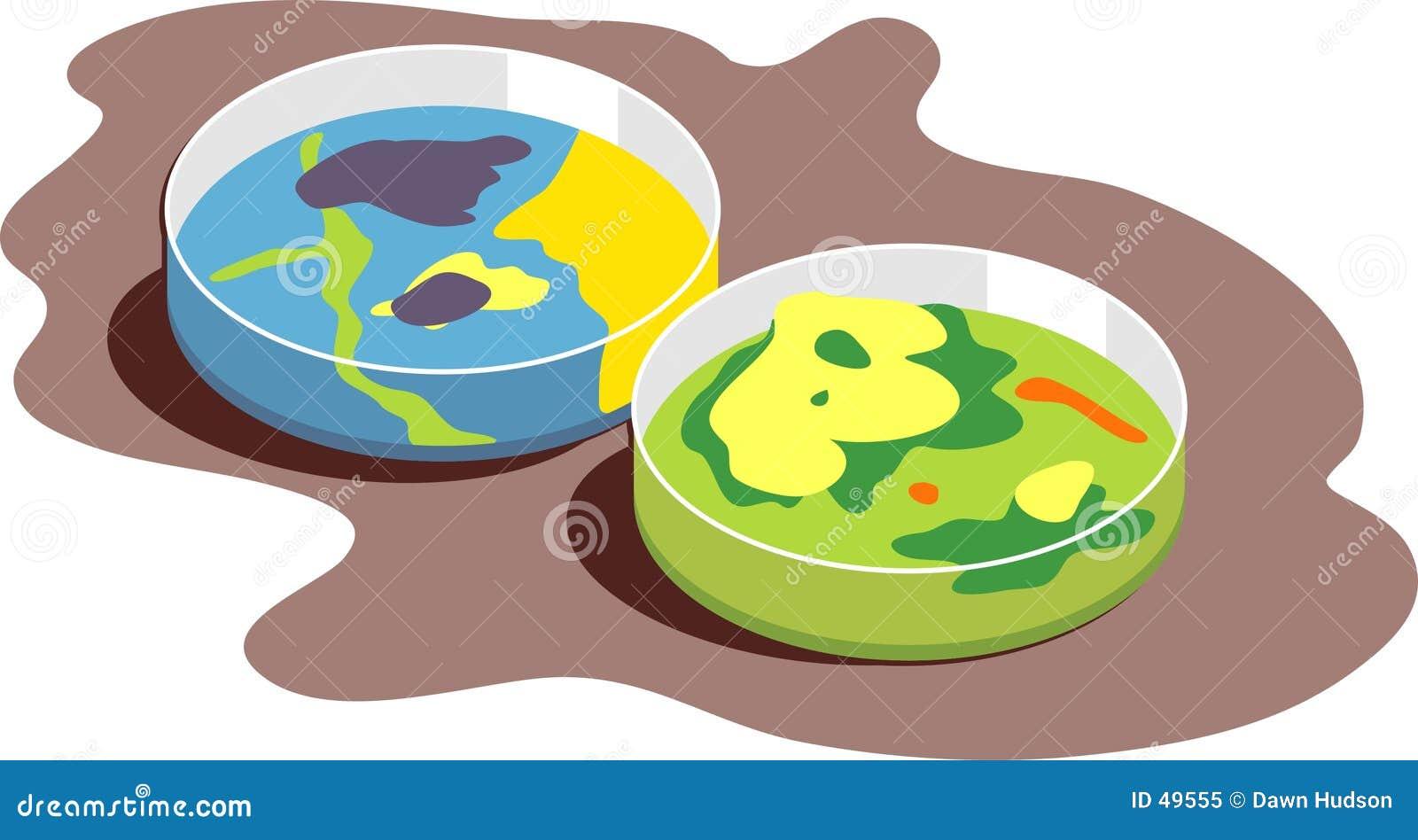 Pratos de Petri