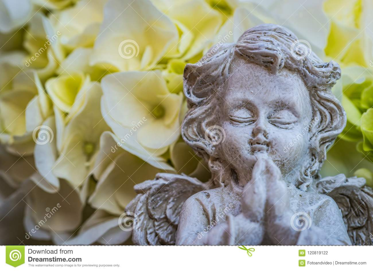 Religious angel praying stock photo image of grief 120819122 praying angel with white flowers death and grief background with copy space for obituary notice mightylinksfo