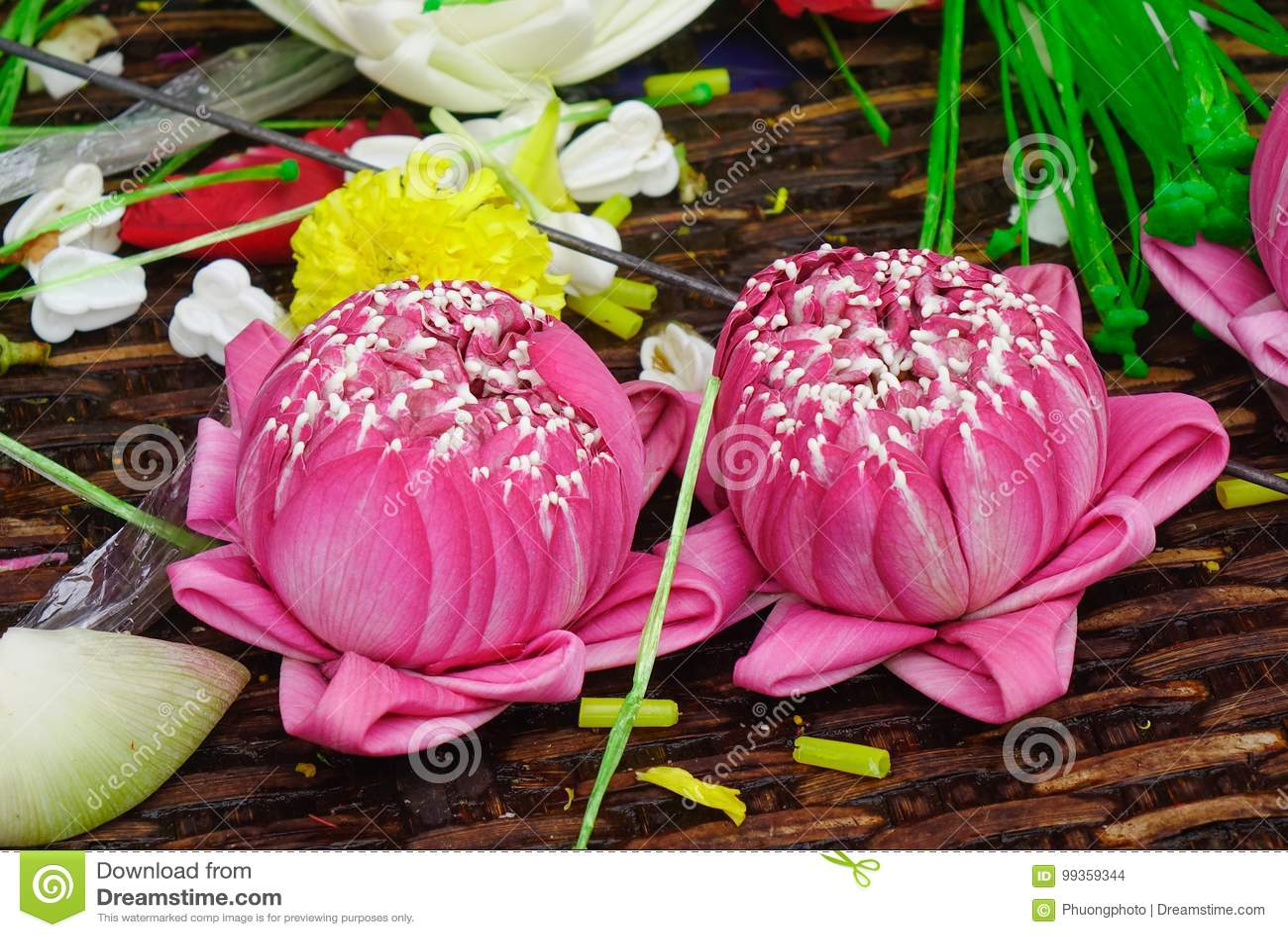 Praying flowers for sale at hindu temple stock photo image of lotus flowers for sale at hindu temple in bangkok thailand izmirmasajfo