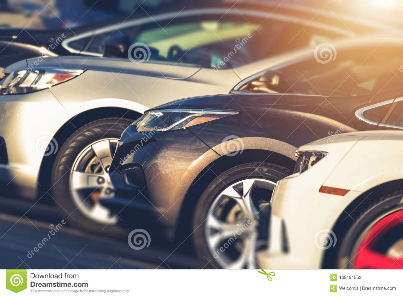 Pre Owned Cars >> Pre Owned Cars For Sale Stock Image Image Of Transportation