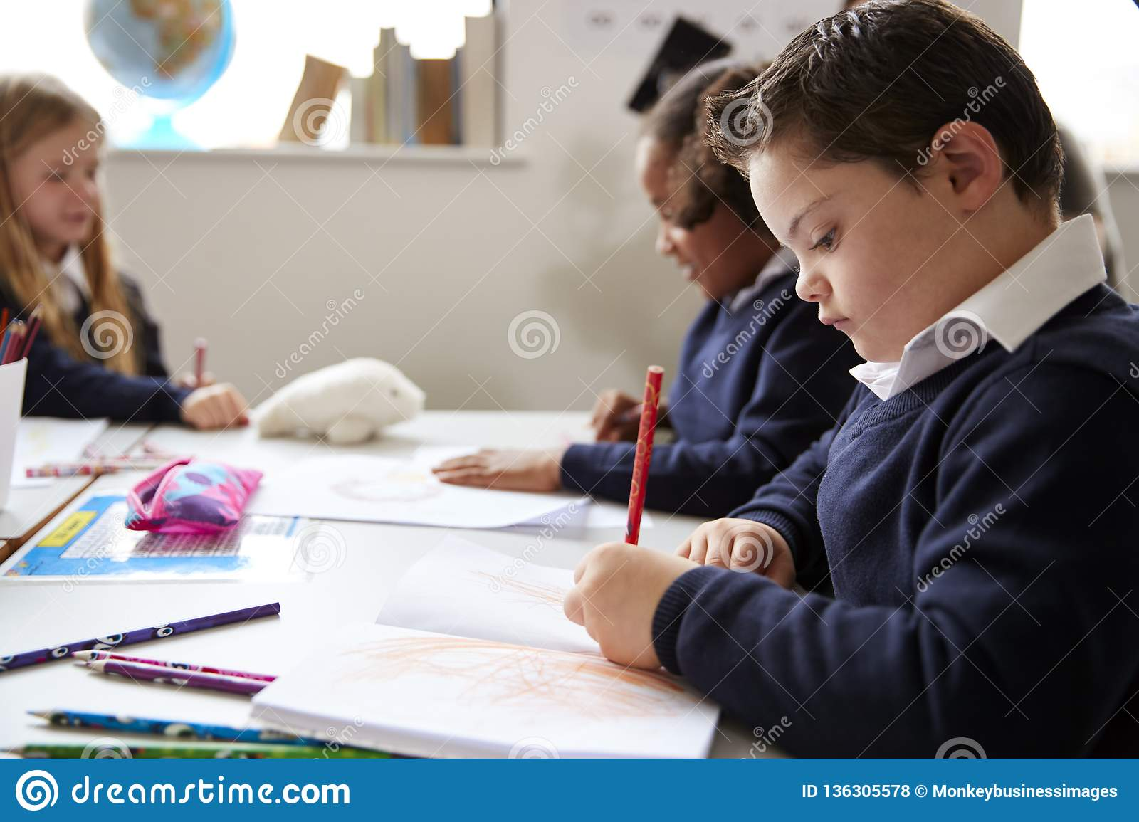 Pre-teen school boy with Down syndrome sitting at a desk writing in a primary school class, close up, side view