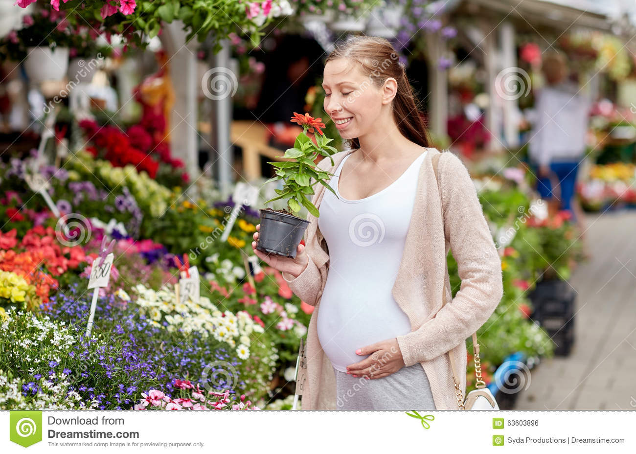 Pregnant woman choosing flowers at street market stock for Gardening while pregnant