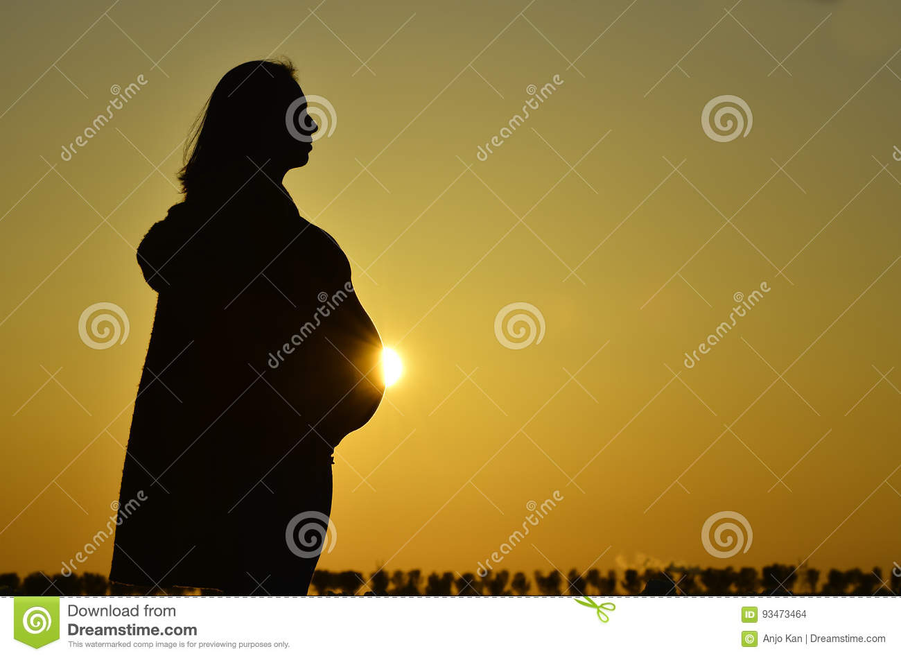 Pregnant woman silhouette Royalty Free Vector Image