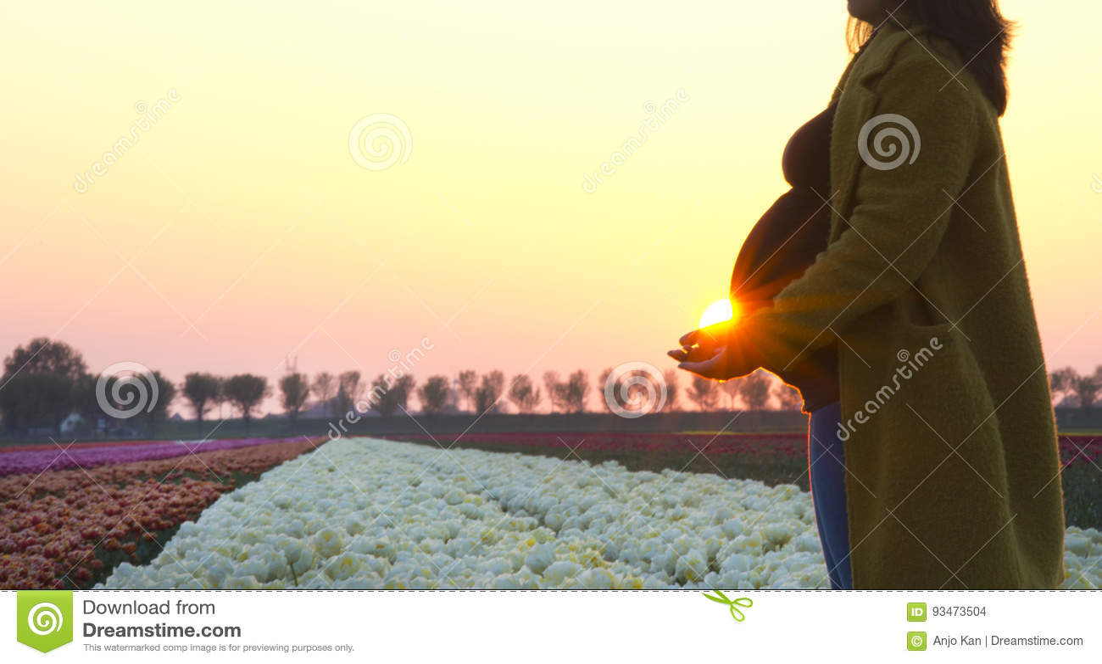 A pregnant woman`s silhouette