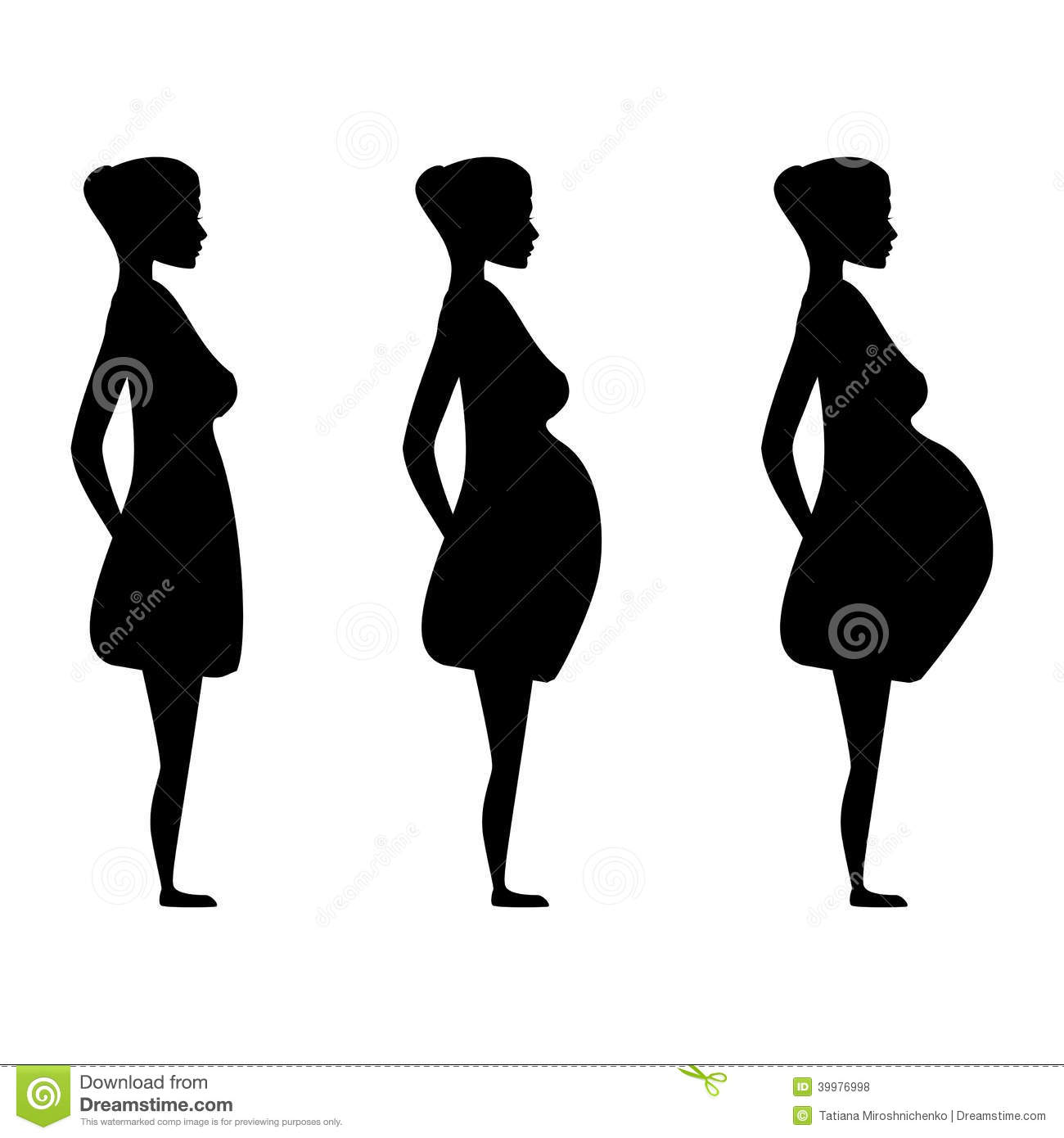 Three Trimesters Of Pregnancy Stock Vector - Image: 42295155