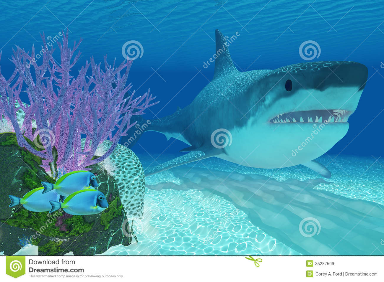 Prehistoric Megalodon Shark Royalty Free Stock Images - Image: 35287509