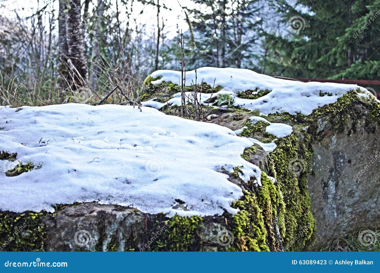 Download Première neige image stock. Image du froid, angeles, washington - 63089423