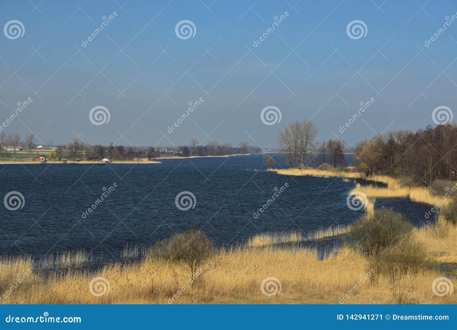 Premier ressort au lac