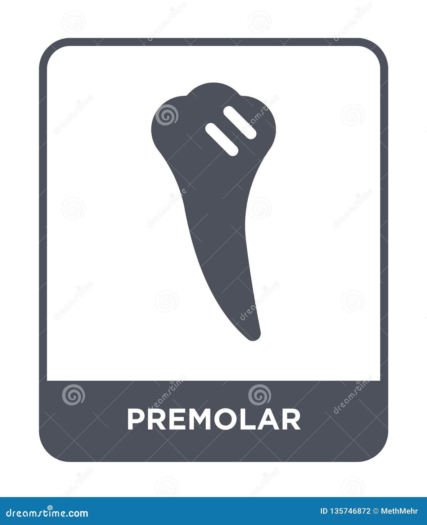 Premolarsymbol i moderiktig designstil premolarsymbol som isoleras på vit bakgrund enkel och modern lägenhet för premolarvektorsy