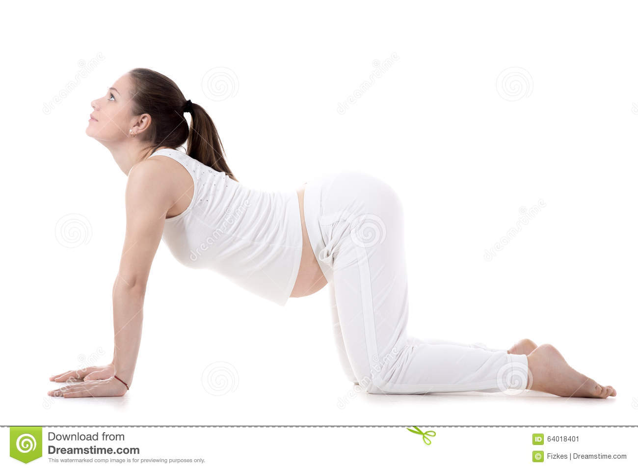 Prenatal Yoga Cow Pose Stock Image Image Of Belly Asana 64018401