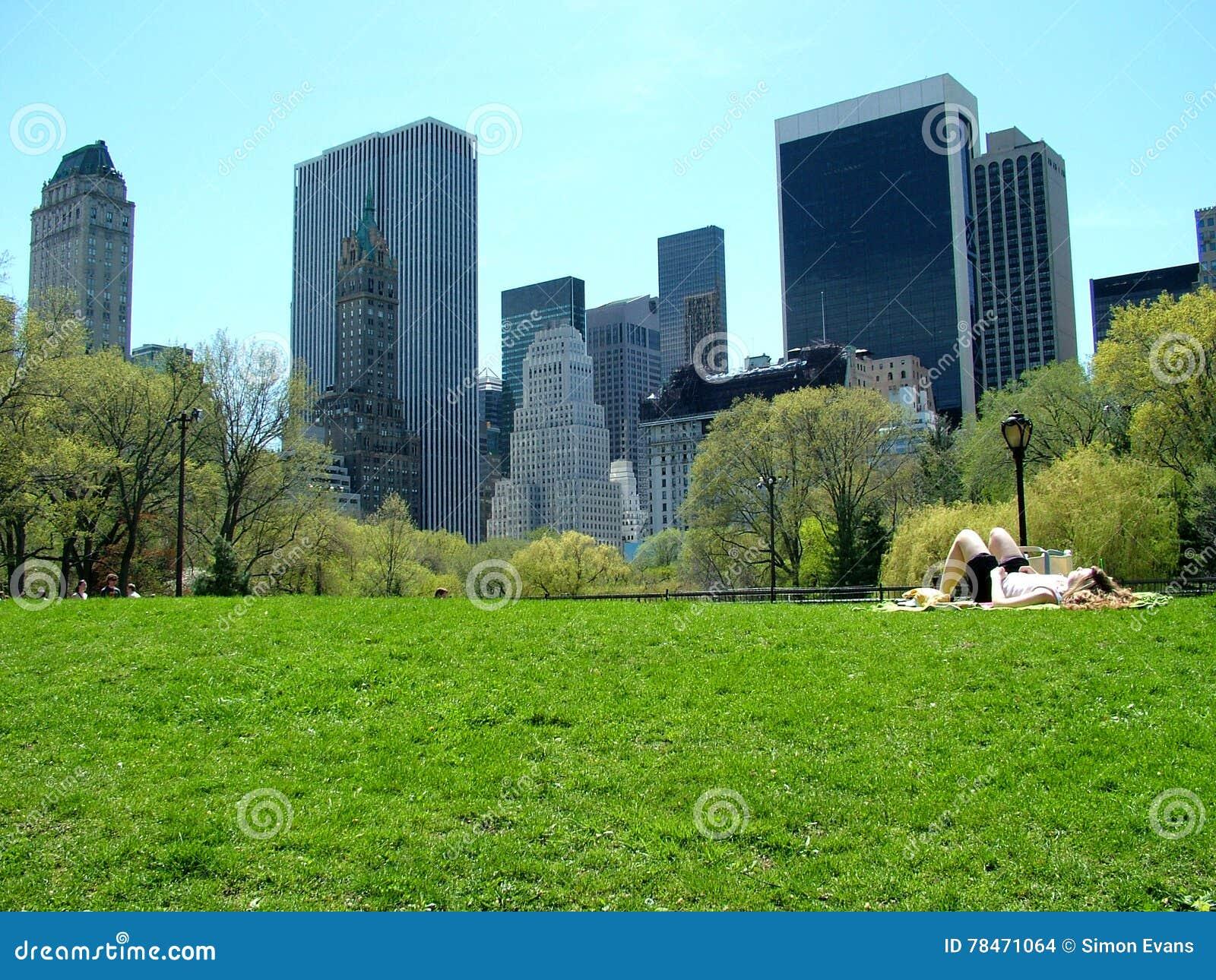 Prendendo il sole in Central Park