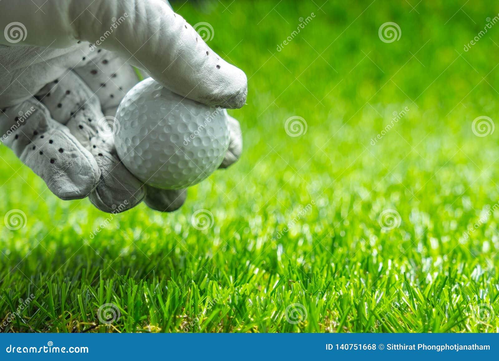 Prenez une boule de golf sur l herbe verte