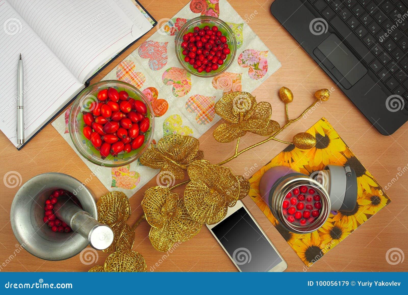 Preparação do cão das tinturas cor-de-rosa e do espinho, telefone, portátil, flor dourada