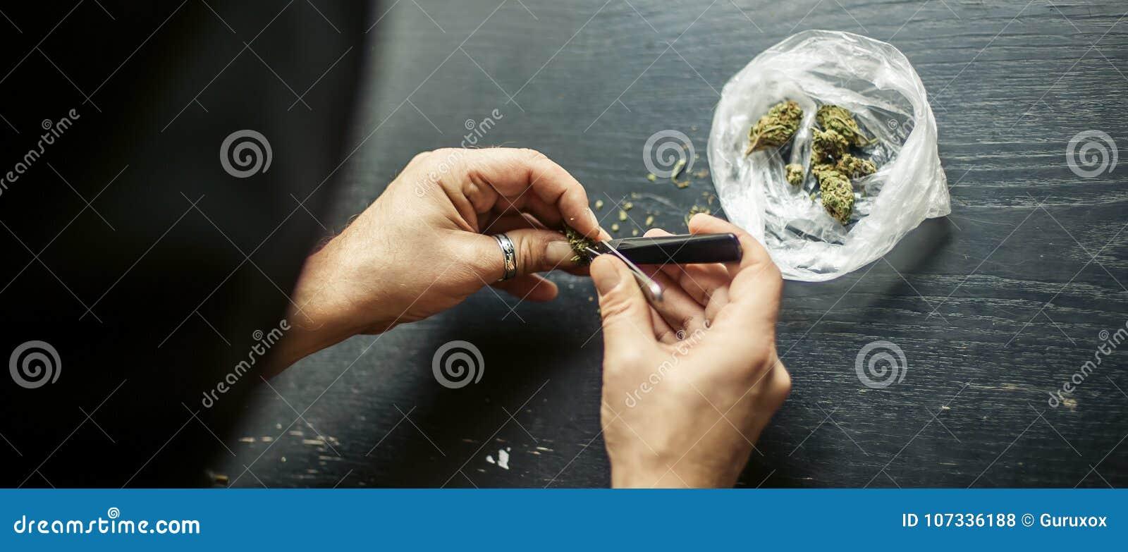 Preparando a junção do cannabis da marijuana Droga o conceito narcótico