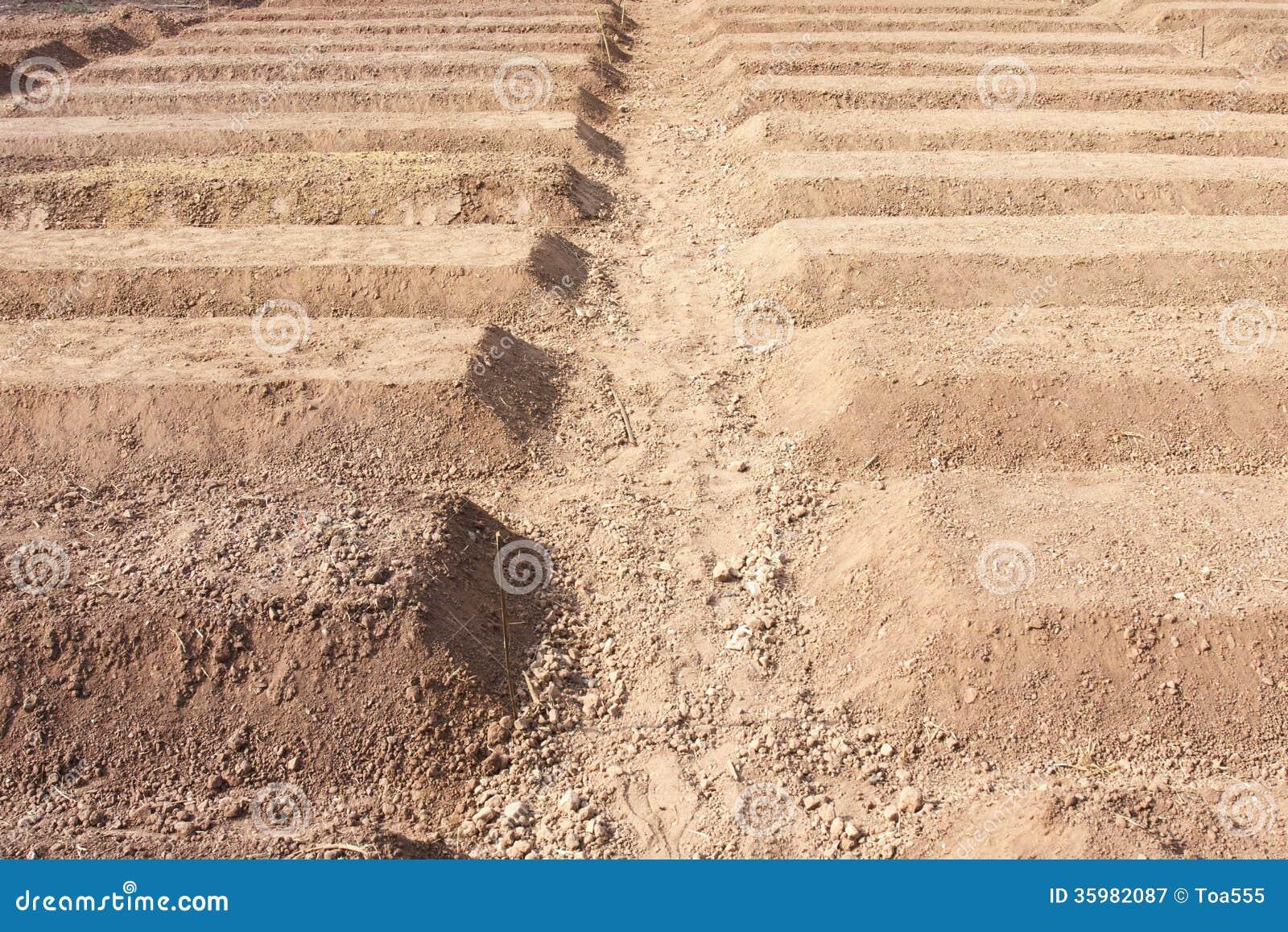 Preparation of soil for planting vegetable royalty free for Preparation of soil