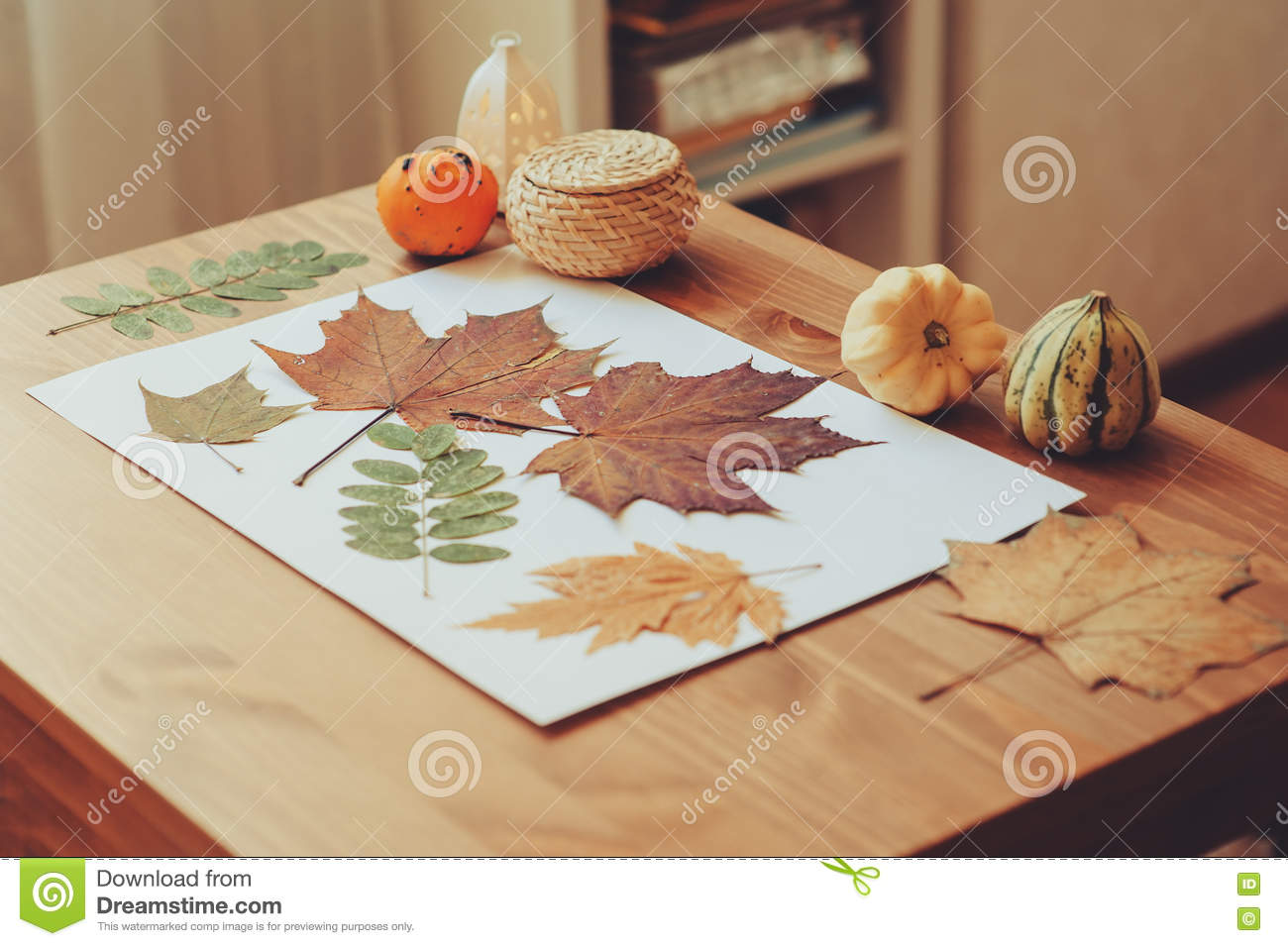 Preparations For Autumn Craft With Kids Herbarium From Dried Leaves